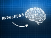 Knowledge brain background knowledge science blackboard blue — Stock Photo