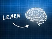 Learn brain background knowledge science blackboard blue — Φωτογραφία Αρχείου