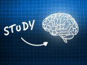 Study brain background knowledge science blackboard blue — Φωτογραφία Αρχείου