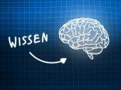 Wissen brain background knowledge science blackboard blue — Φωτογραφία Αρχείου