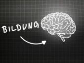 Bildung brain background knowledge science blackboard gray — Stock Photo