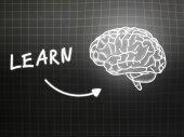 Learn brain background knowledge science blackboard gray — Φωτογραφία Αρχείου