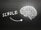 Schule brain background knowledge science blackboard gray — Stock Photo