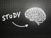 Study brain background knowledge science blackboard gray — Φωτογραφία Αρχείου