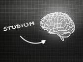 Studium brain background knowledge science blackboard gray — Φωτογραφία Αρχείου
