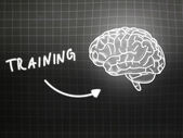 Training brain background knowledge science blackboard gray — Stock Photo