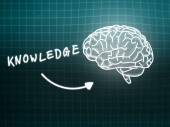 Knowledge brain background knowledge science blackboard turquois — Φωτογραφία Αρχείου