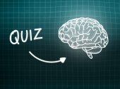 Quiz brain background knowledge science blackboard turquoise — Φωτογραφία Αρχείου