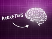 Marketing brain background knowledge science blackboard pink — Stock Photo