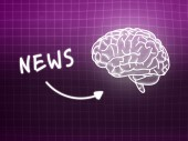 News brain background knowledge science blackboard pink — Stock Photo