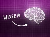 Wissen brain background knowledge science blackboard pink — Φωτογραφία Αρχείου
