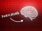 Forschung brain background knowledge science blackboard red — Stock Photo