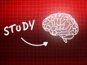 Study brain background knowledge science blackboard red — Stock fotografie