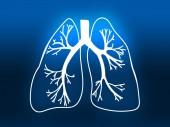 Lung Biology Organ Medicine Study blue — Stock Photo