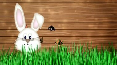Happy Easter - Easter Bunny Video Animation — Stock Video