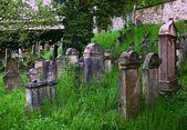 Jewish cemetery — Stockfoto