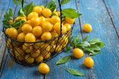 Fresh yellow cherry-plums on the basket — Stock Photo