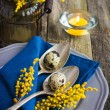 Easter table setting with spring flower and eggs on wooden backg — Stock Photo #67422477
