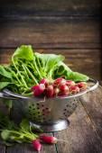 Fresh organic radish in colander — Stock Photo