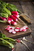 Fresh organic radish — Stock Photo