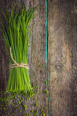 Bunch of fresh chives — Stock Photo