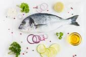 Verse rauwe dorado vis met kruiden — Stockfoto