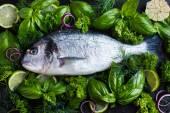 Fresh raw dorado fish with spicy herbs — Stock Photo