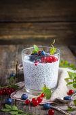 Iogurte natural com sementes de chia e bagas frescas — Fotografia Stock