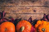Herbst-Essen-Hintergrund mit Kürbisse und farbigen Blätter — Stockfoto