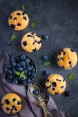 Blueberry muffins and fresh berries — Stock Photo