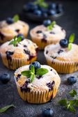 Blueberry muffins with powdered sugar and fresh berry — Stock Photo