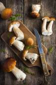 Boletus mushrooms on rustic background — Stock Photo