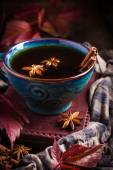 Cup of hot spicy tea with anise and cinnamon, selective focus — Stock Photo