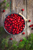 Fresh cranberry (cowberry) on wooden background — Stock Photo