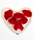 Pearl heart with red petals — Stock Photo