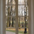 Autumn park  with street lamp from window — Stock Photo #59991539