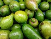 Group of fresh avocados in the supermarket — Stock Photo