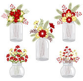 Christmas flowers in mason jars — Vettoriale Stock