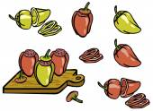 Set color simple sketch red and green peppers and stuffed pepper — Stock Vector
