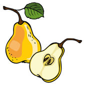 Vector icon set color pear  isolated on white background. — Stock Vector