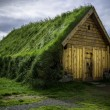Turf House — Stock Photo #56633445