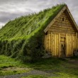 Turf House — Stock Photo #56633471