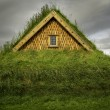Turf House — Stock Photo #56633537