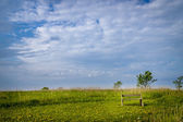Spring landscape with bench — Foto Stock