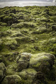 Rocks and Moss — Zdjęcie stockowe
