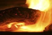 Log on fire — Stock Photo