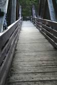 Trail bridge — Stock Photo