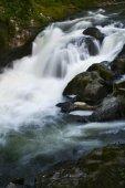 Pacific Northwest Waterfall — Stock Photo
