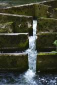 Fish Ladder — Stock Photo