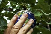 Picking the earth — Stock Photo